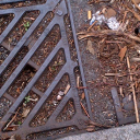 The weird and wonderful world of blocked drains