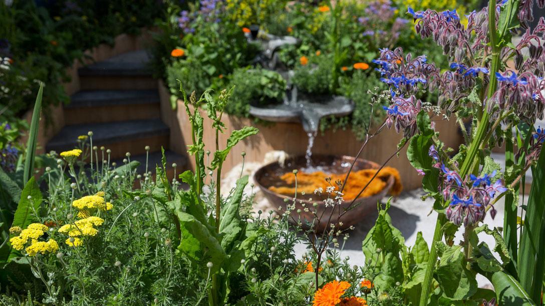 The best flower for garden design